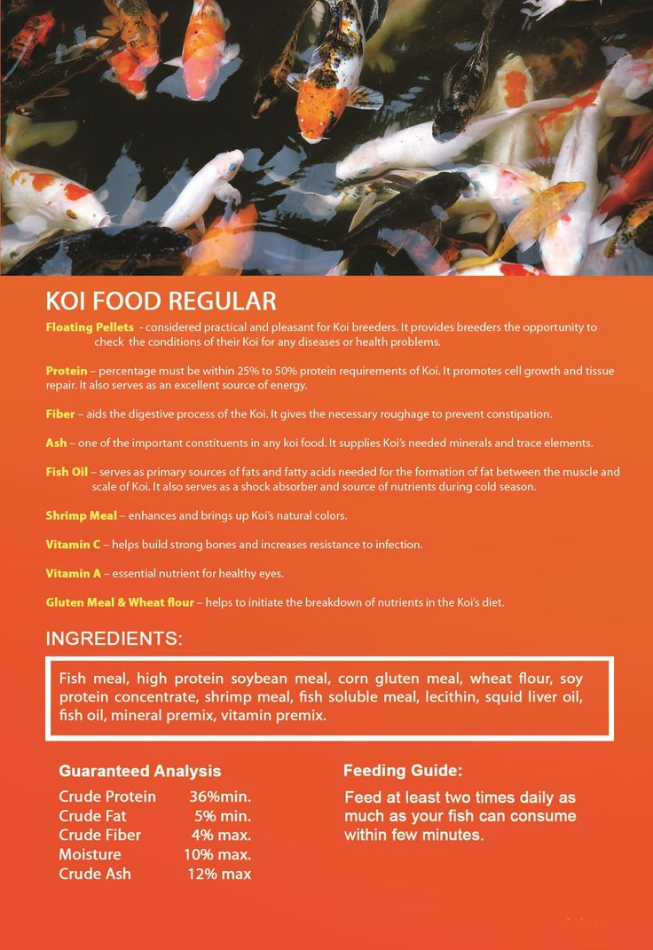 Koi Food Plus Excellent source of energy Promotes cell growth and tissue repair Stabilizes metabolism Enhances Koi's natural color Aids digetive process No Preservatives