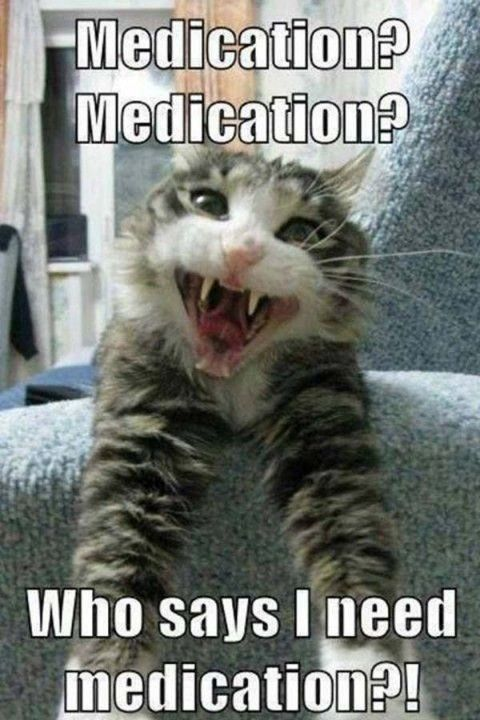 Who says I need medication? Humor of the Day - RawDumps