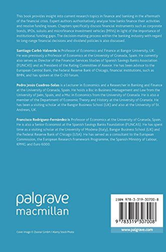 Bank Funding, Financial Instruments and Decision-Making in the Banking Industry (Palgrave Macmillan