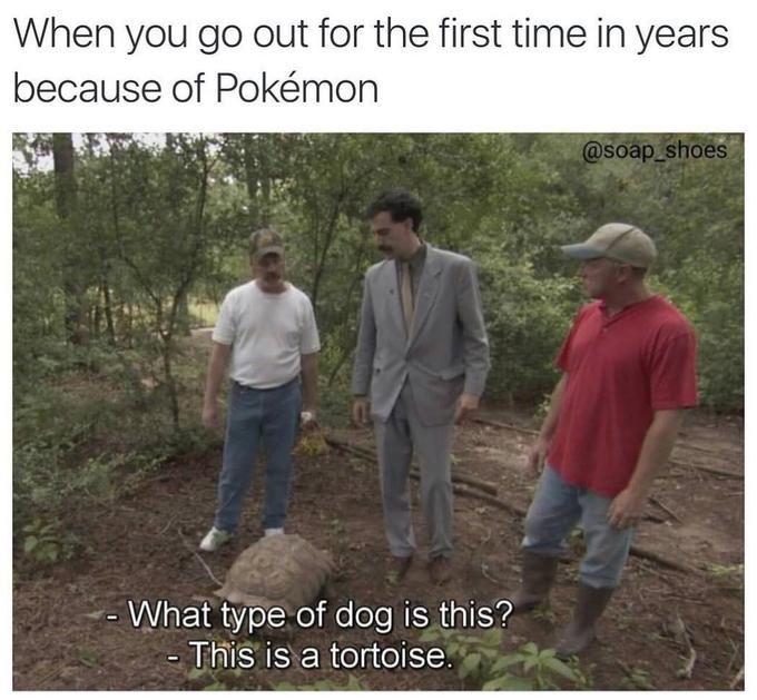 Pokémon GO: Trending Images Gallery | Know Your Meme