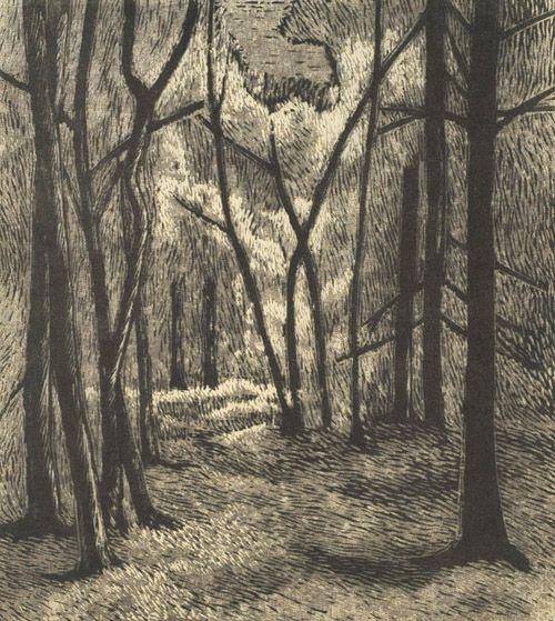 Vilho Askola: Metsäpolku (1952) puupiirros.