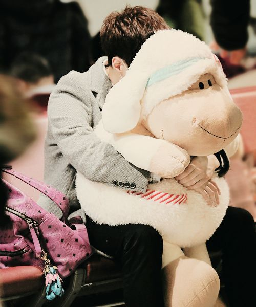 EXO Lay hiding behind his stuffed sheep baby:) At least I think it's a sheep ??? It's okay, I'm certain that's Lay holding whatever that is:)