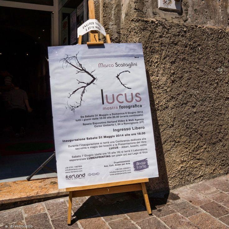 CriticAle: Ronciglione - Mostra di Marco Scataglini