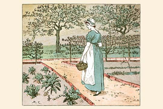 The Great Panjandrum Himself; A girl goes into the garden to cut a cabbage leaf to make an apple Pie
