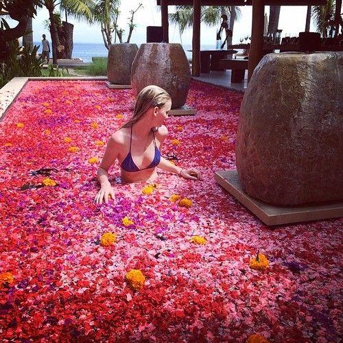 flower-filled pool