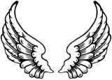 Angel Wings Picture #W