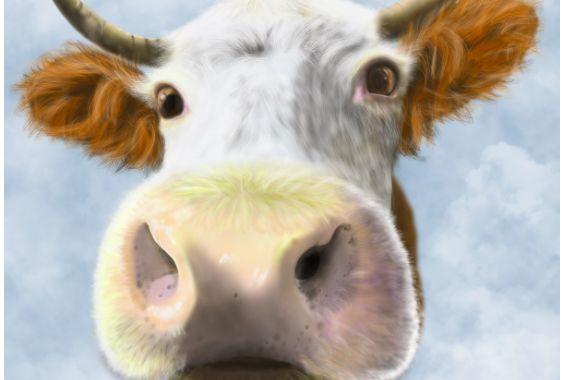 This post is a short story all about a Cow called Doris.Doris had the best life a farmed cow could possibly ever have. Doris lived on a cattle farm in the US that produced the best quality beef whilst raising the cattle in the most natural and humane way possible. Often, when we discuss eating...