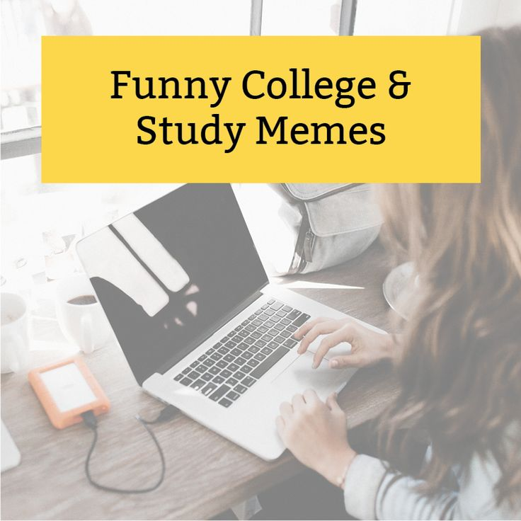 funny college memes and study memes board for online students.