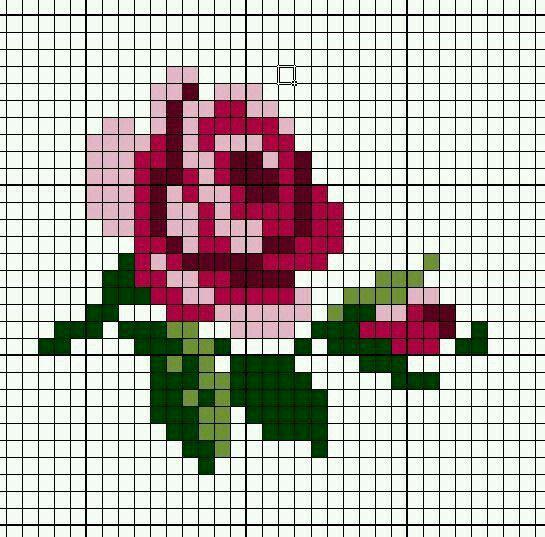 Rosas II