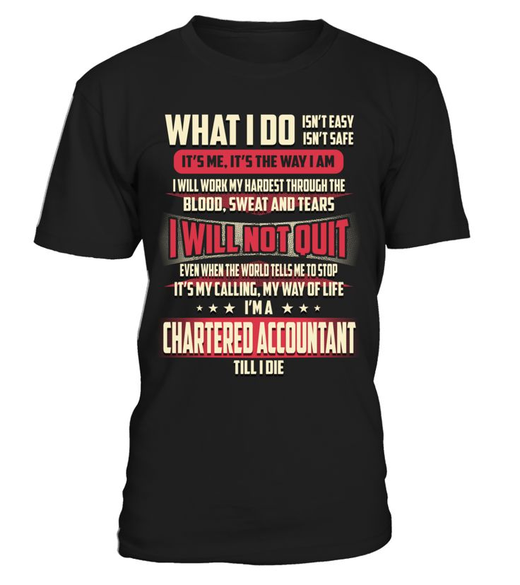 Chartered Accountant - What I Do