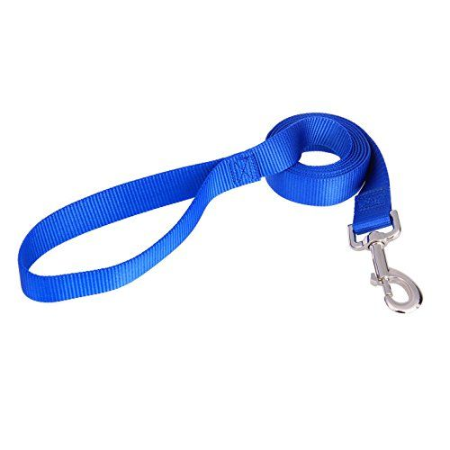 Pet Classic Solid Color Dog Leash 6 Feet Long, 1 Inch Wide, 4 Colors, Heavy Duty Strap, Tough Durable Leash Matching Collar
