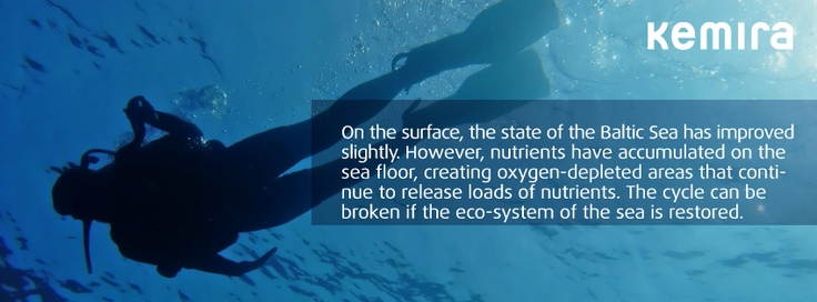 On the surface, the state of the Baltic Sea has improved slightly. However, nutrients have accumulated on the sea floor, creating oxygen-depleted areas that continue to release loads of nutrients. The cycle can be broken if the eco-system of the sea is restored.