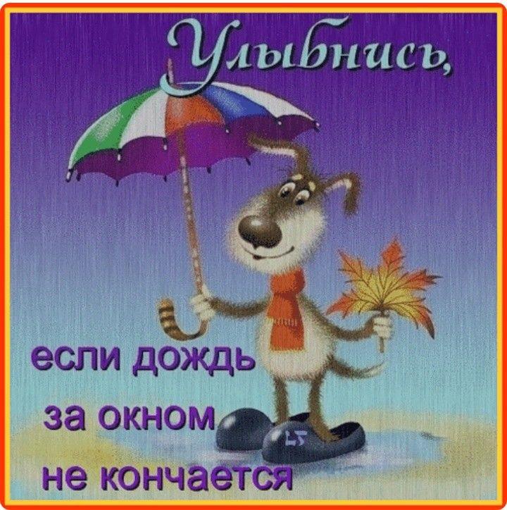 Днем рождения, открытки про дождливую погоду