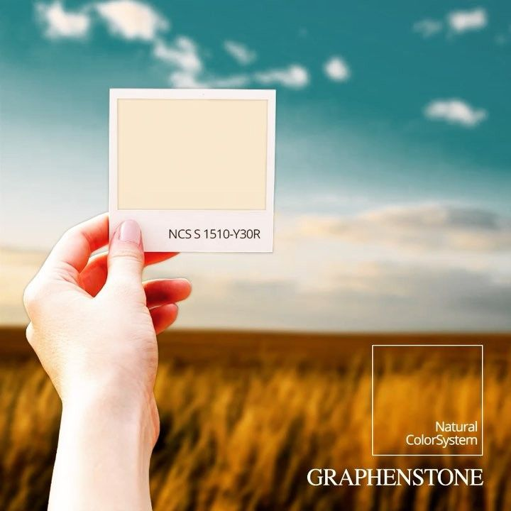 https://instagram.com/p/BYNZdVCg4ga/ Do you like brown? Bring the colors of nature to your walls with the Graphenstone ColorSystem. A color system with natural pigments, breathable, ecological and Certified Cradle To Cradle SILVER. Let your home breathe. #GraphenstoneColorSystem #NaturalPaint #EcologicalProducts #PaintsForTheGreenGeneration