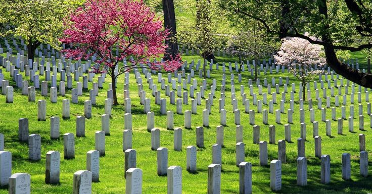 WW2 Captain Rested In Arlington Cemetary For Decades – Now He Has Been Returned Home To North Carolina