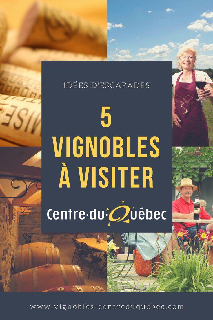 Tout au long de la saison estivale, plusieurs activités sont offertes aux visiteurs : promenade et visite guidée dans les vignobles, ornithologie, découverte de la viniculture biologique et, bien entendu, une dégustation des dernières cuvées!