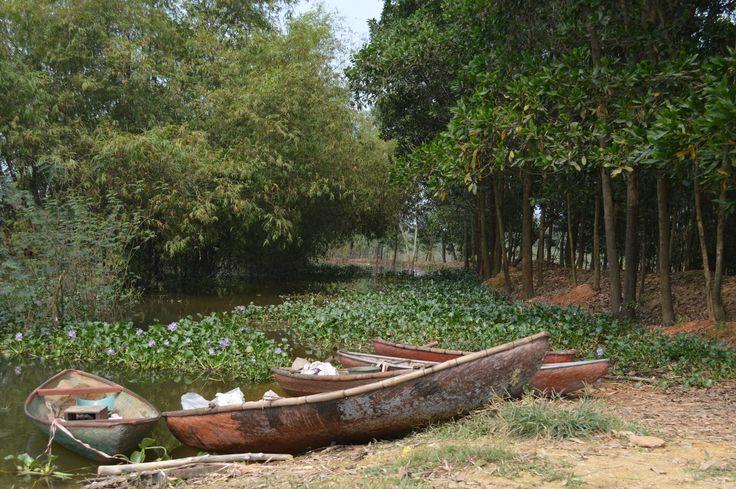Een verkeerde afslag loopt uit op een verstild straatje aan een meer. In de verte roeien wat locals. Dichtbij dobberen wat kano's. http://www.pimenjiska.nl/scootertrip-rond-hanoi