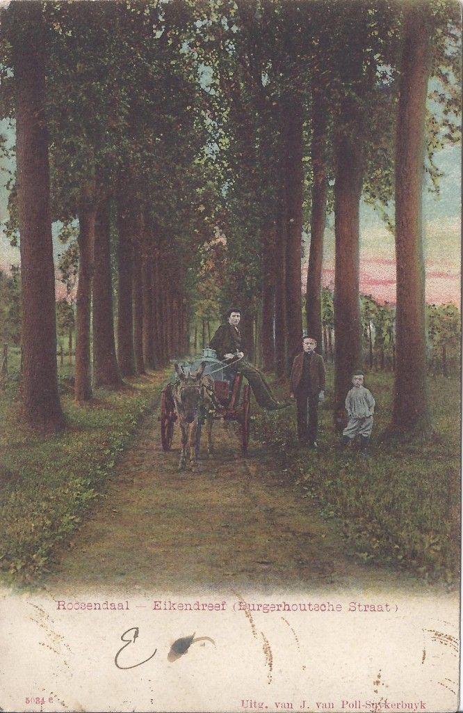 Eikendreef | Roosendaal Nostalgie