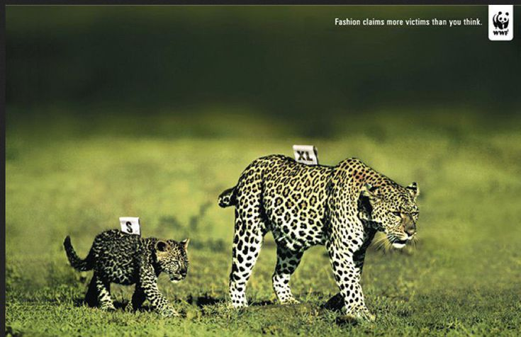 WWF; Fashion kills more victims than you could imagine...via India