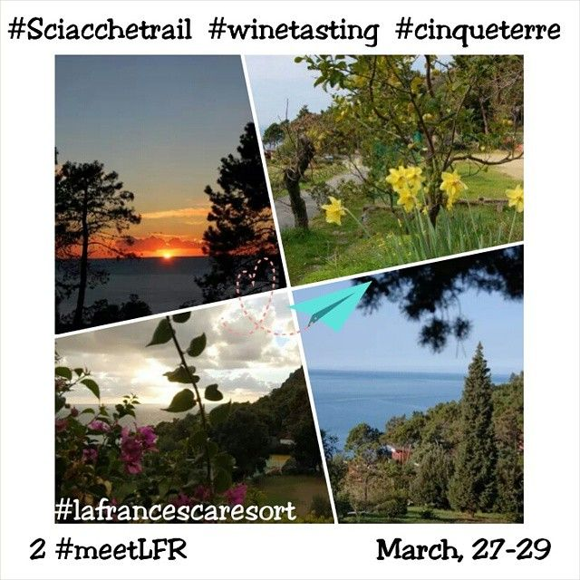 #Sciacchetrail : #winetasting and #sport in the beautiful portrait of #cinqueterre , Italy March 29th