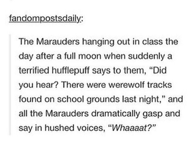 "Headcannons about the Marauders are my favorite <<< IT'S ""HEADCANONS"" OHMYGOD ...I'm sorry that was uncalled for. I've just been having a bad day and my kismesis crush spells it ""headcannon"" and it's extremely annoying. But that's what I hate about her <3<<<"
