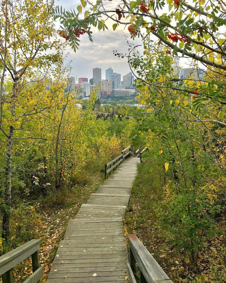 Fall in Edmonton! ❤