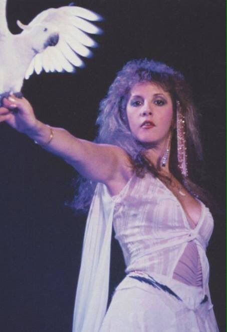 a lovely photo of Stevie  ~ ☆♥❤♥☆ ~     and her brother Chris's cockatoo ~ an outtake for the cover of her 1981 debut 'Bella Donna' album  ~  https://en.wikipedia.org/wiki/Bella_Donna_(album)