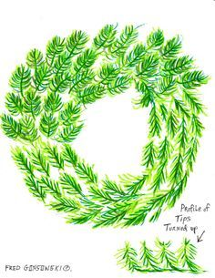 It's EASY to Fluff a Fake / Artificial Christmas Wreath