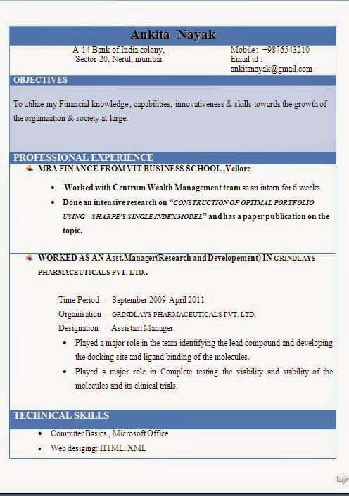 examples of good cv Sample Template Example ofExcellent Curriculum - technical skills to put on a resume