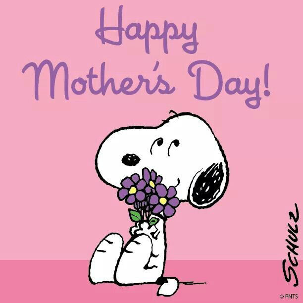 Feliz dia de la Madre!!!!