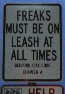 "This reminds me of Freak on a Leash by Korn. ""FEELIN' LIKE A FREAK ON A LEASH!"""