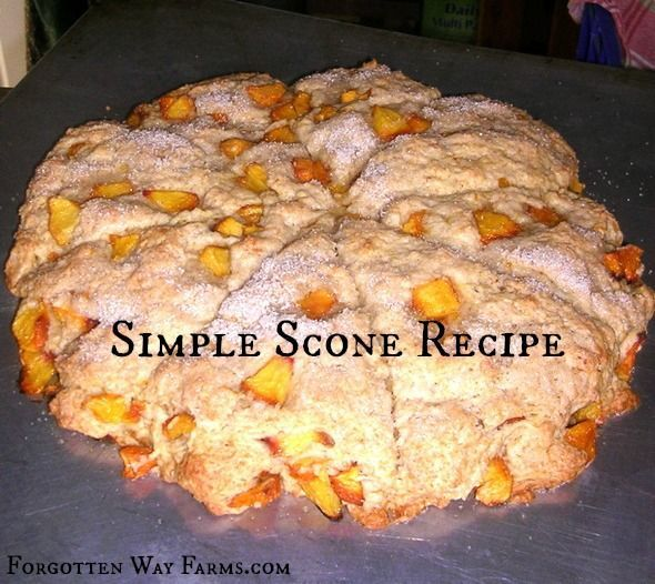 Scones 2 Cups flour 1/3 cup sugar 1 tsp. baking powder ¼ tsp. baking soda 1/4 tsp. salt ½ cup butter 2/3 cup buttermilk Mix like you would biscuits. Then add your fresh fruit. (For a fun fall scone add cranberries, walnuts, and some orange peel.) Pat into a circle and cut into wedges, separate...Read More »