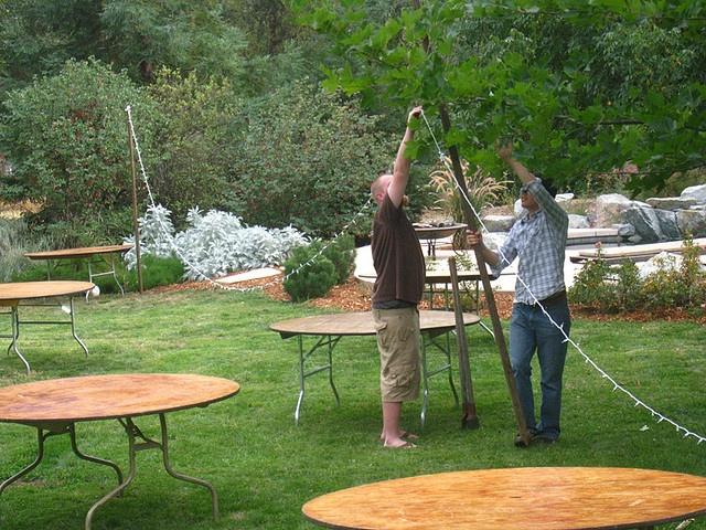 Backyard wedding string light idea