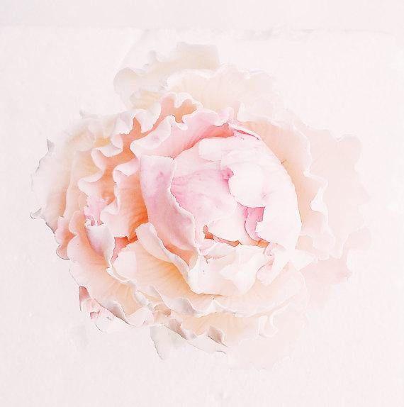 Set of 3 blooms in blush