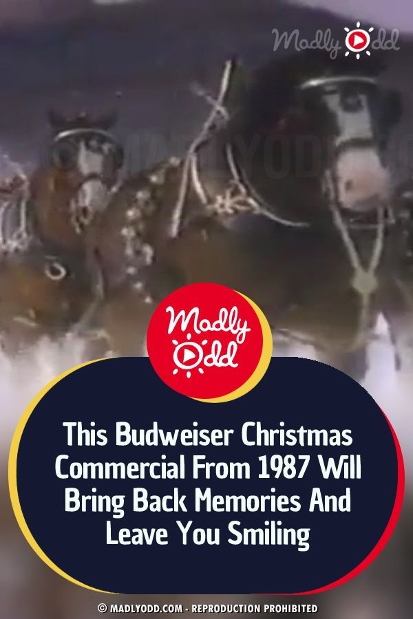 This Budweiser Christmas Commercial From 1987 Will Bring Back