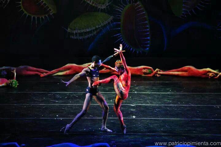 """Dionaea"" con Juan Capellan"