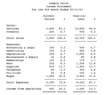profit and loss statement for business - Google Search