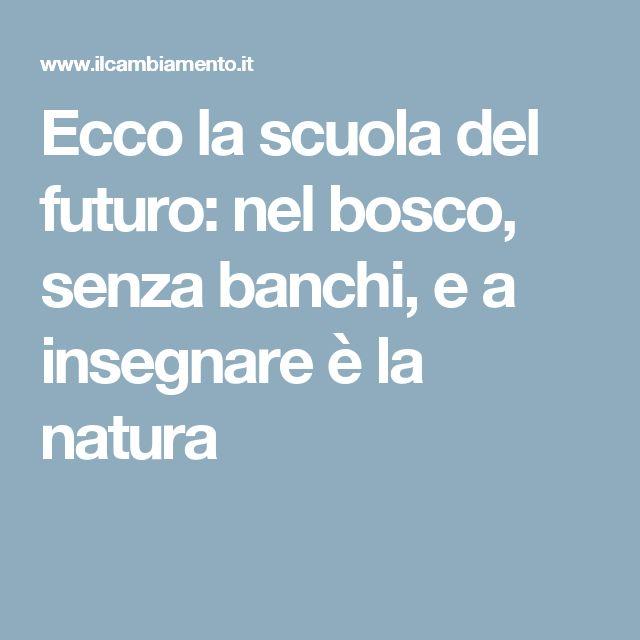 Ecco la scuola del futuro: nel bosco, senza banchi, e a insegnare è la natura