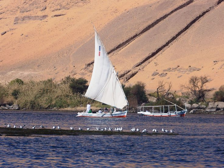 Egitto- Assuan