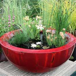 """Small water gardens --- one pinner says """" These are easy and add the water touch w/o any expensive filters or other set ups."""""""