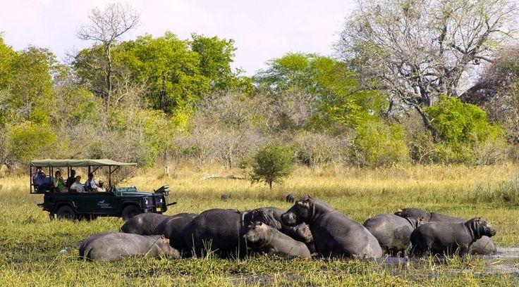 ©Wilderness Safaris | Malawi