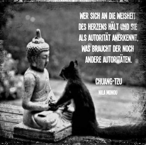 Zitate Des Buddha