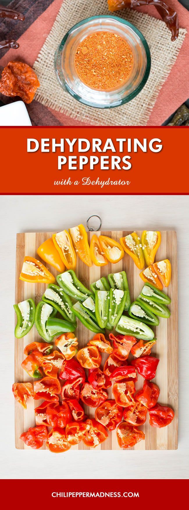 Dehydrating Chili Peppers with a Dehydrator - How To - Instructions for dehydrating chili peppers in a food dehydrator so you can preserve them for later use, make crushed red pepper, or grind them into powders for your own special seasoning blends.