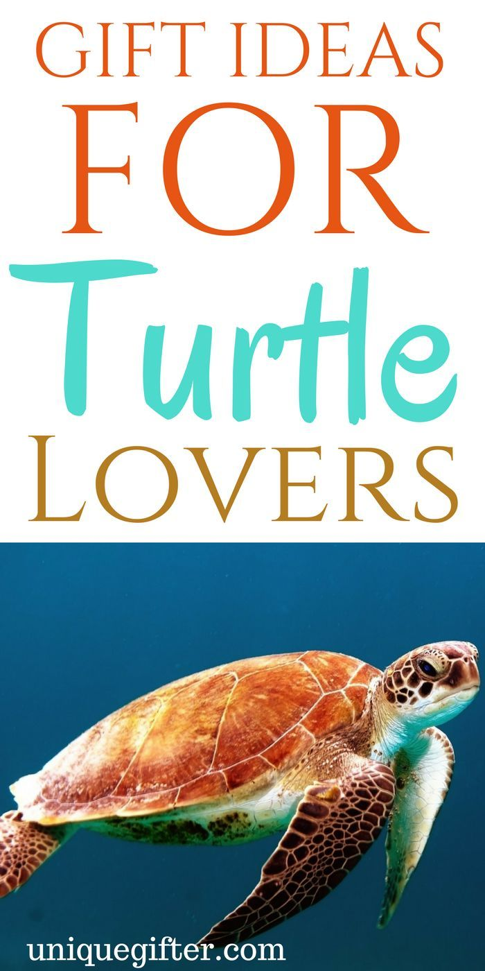 Turtle gifts for teachers | turtle gifts DIY | turtle gifts for him | turtle gifts for her | turtle statues | turtle gifts for teachers | turtle dinnerware ...  sc 1 st  Pinterest & Gift Ideas for Turtle Lovers | Best Gift Ideas | Turtle gifts ...