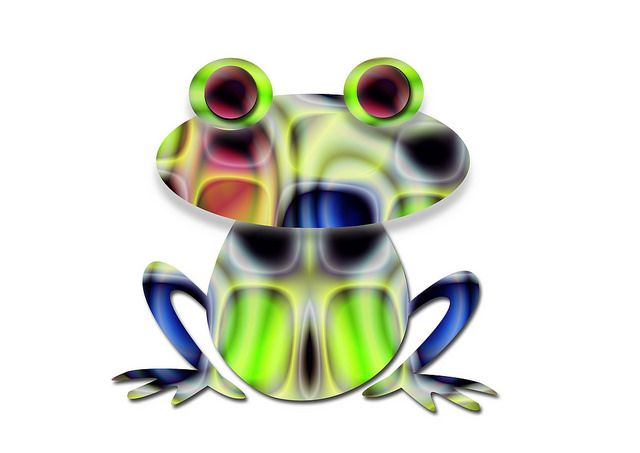 frog523 | Flickr - Photo Sharing!