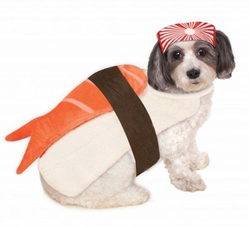 Sushi Pet Costume     Deal of the day >>>   http://amzn.to/2ajyJXe