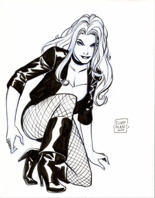168 Best Images About Black Canary On Pinterest Black