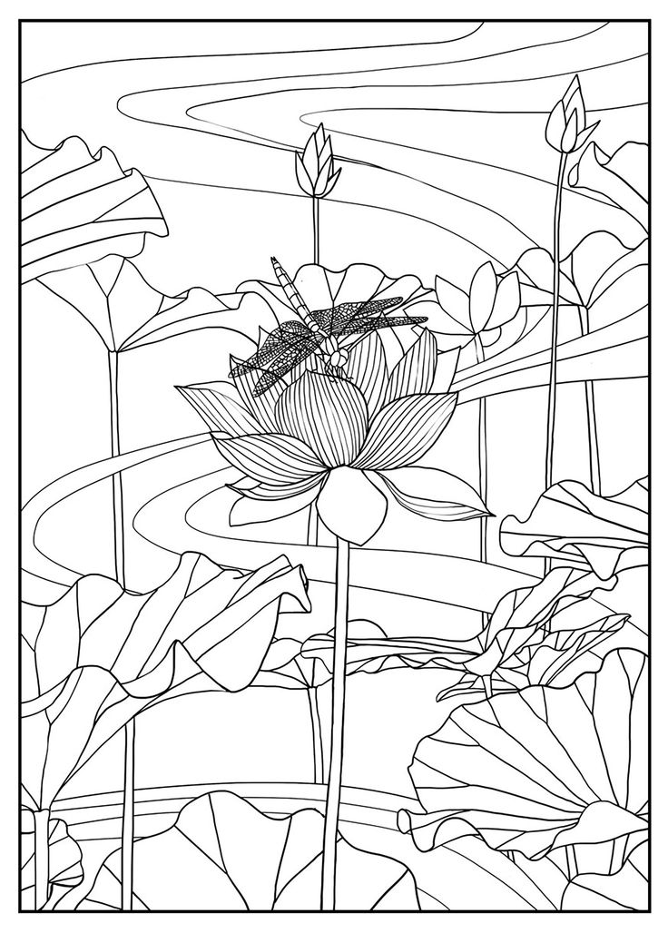 Lotus, Exclusive coloring pageFrom the gallery : Flowers And VegetationArtist : Mizu