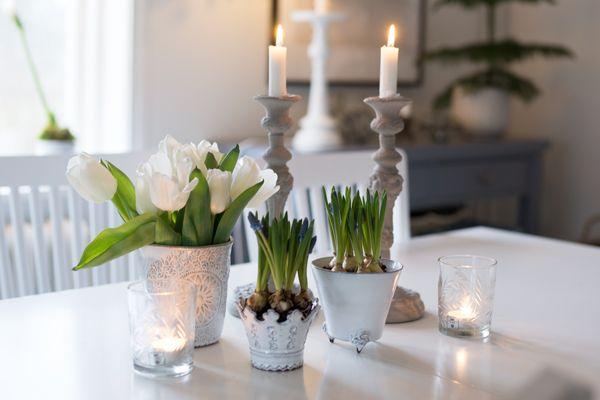 Blomsterpotter hvit keramikk (blogg)
