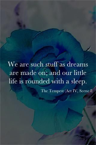 we are such stuff as dreams are made on, and our little life is rounded with a sleep - the tempest/shakespeare